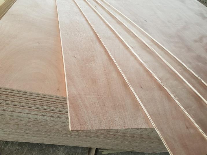 Gỗ ép Packing (Packing Plywood)
